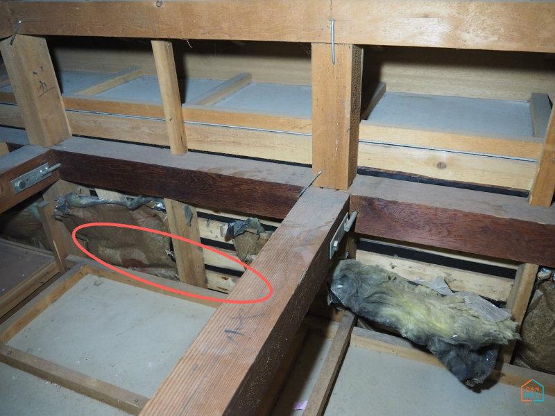 天井の壁隙間