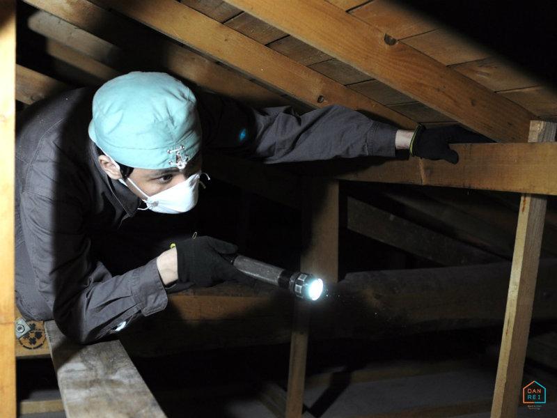 小屋裏の調査