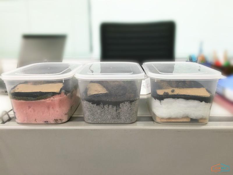 断熱材防蟻実験の結果