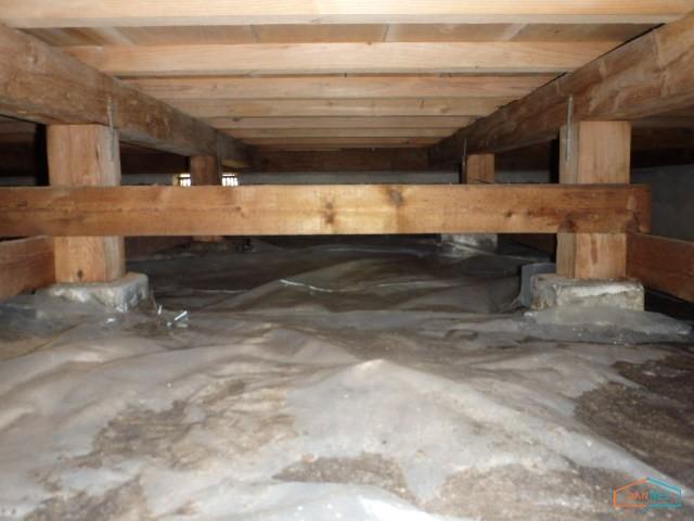 施工前の無断熱の床下